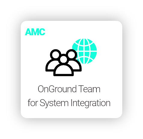 Do you have an OnGround Team for System Integration